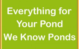 Everything For Your Pond