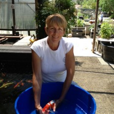 Sunland Water Gardens Owner