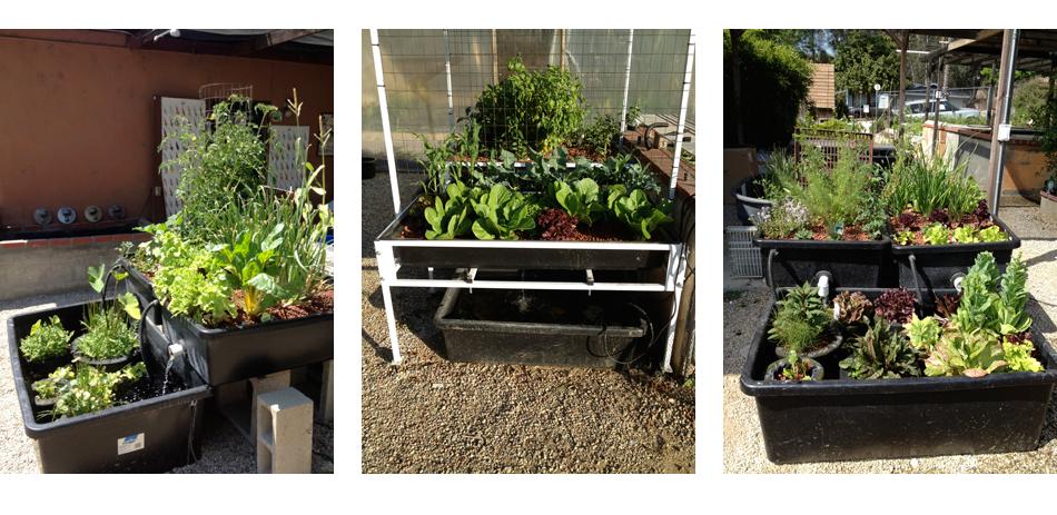 Organic Gardens Supplies - Wholesale Organic Garden Supplies