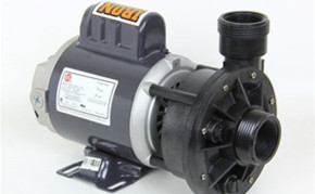 Pond supply: pond pump: Waterway Iron Might inline Pump