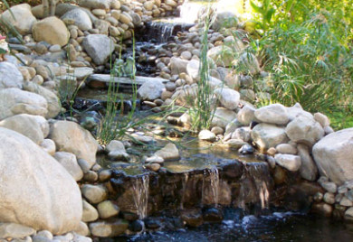 Pond display rock pond for Fish pond rocks