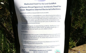 Pond Supplies: Fish Medication: Medfinn medicated fish food