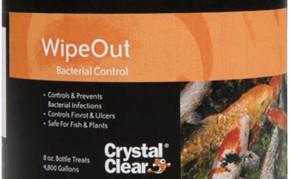 Pond Supplies: Fish medication: Crystal clear Wipeout