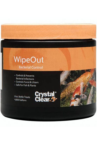 Wipeout, crystal clear wipeout, fish medication, bacterial contr
