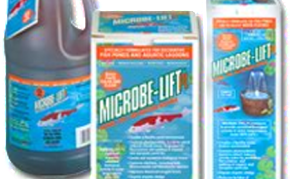 Pond Care: Beneficial bacteria: Microbe-lift PL