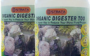 Pond Care: Beneficial bacteria: Organic Digester too