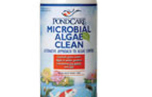 Pond Care: Beneficial bacteria: PondCare Microbial Algae Clean