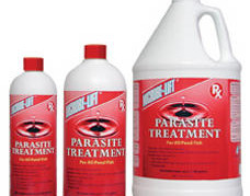 Pond Fish Supplies: Microbe-lift ICH-OUT Parasite Treatment | Pond Fish