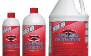 Pond Fish Supplies: Pond Fish Protectant | Pond Fish