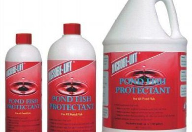 Pond Fish Supplies: Pond Fish Protectant - Pond Fish Health Care - Pond Fish Supplies