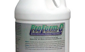 Pond Fish Supplies: ProForm C | Pond Fish