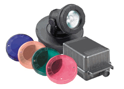 Pond Supplies: Pondmaster 20w Halogen Light Kit - Pond Lighting - Pond Supplies