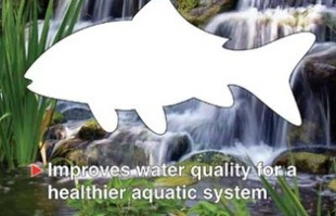 Pond Filters: Supra Plus Bio Media | FishMate Filters