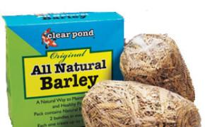 Pond Maintenance: Barley Pond Bundles | Pond Water Care