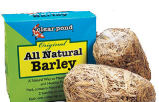 Pond Maintenance: Barley Pond Bundles | Pond Water Care