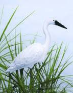 Pond & Garden Protection: Egret - Pond Maintenance