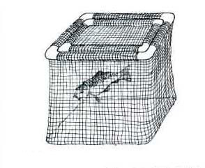 Pond & Garden Protection: Fish Cages - Pond Maintenance