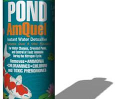 Pond Maintenance: Kordon Amquel | Pond Water Care
