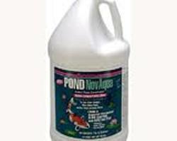 Pond Maintenance: Kordon Novaqua | Pond Water Care