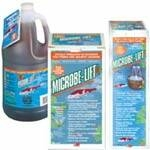 Pond Water Care: Microbe-Lift PL - Pond Maintenance