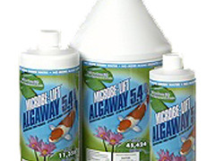 Pond Maintenance: Microbelift Algaway 5.4 | Pond Water Care