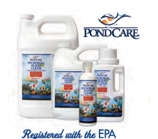 Pond Maintenance: Microbial Algae Clean | Pond Water Care