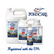 Pond maintenance microbial algae clean pond water care for Pond care supplies