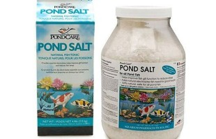 Pond Maintenance: Pond Salt | Pond Water Care