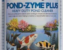 Pond Maintenance: Pond Zyme Plus Barley | Pond Water Care
