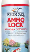 Pond Maintenance: PondCare Ammo-Lock | Pond Water Care