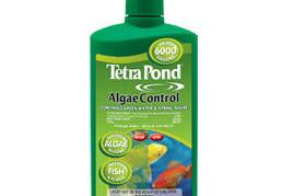 Pond Maintenance: Tetra Algae Control | Pond Water Care
