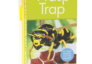 Pond & Garden Protection: Wasp Trap - Pond Maintenance