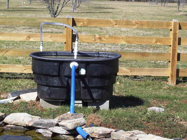 will a homemade pond filter work