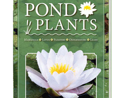 Aquascape Pond Supplies: Hobbyists Guide To Pond Plants Book