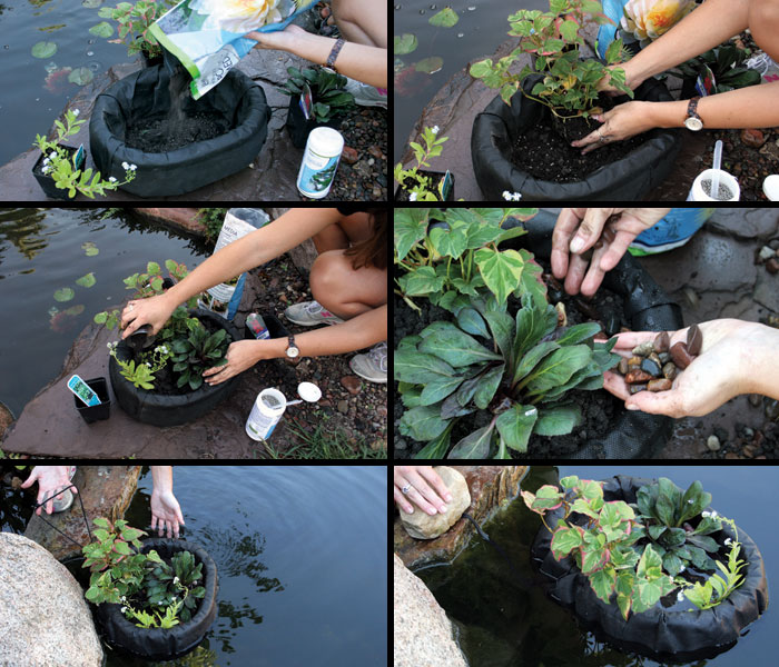Aquascape Floating Plant Island - Pond Plant Care - Planting Containers - Part Number: 89006 - Aquascape Pond Supplies