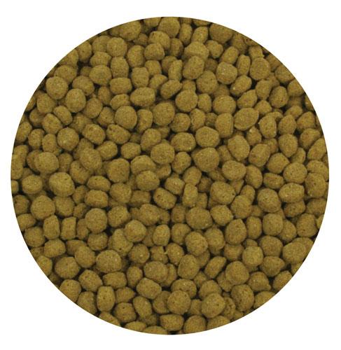 Aquascape Premium Staple Fish Food Pellets - 20 Kg Bag - Fish Care & Food - Fish Food - Part Number: 50003 - Aquascape Pond Supplies