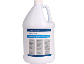 Aquascape AquascapePRO® Beneficial Bacteria/Liquid - 1 gal - Beneficial Bacteria - Water Treatments - Part Number: 30406 - Aquascape Pond Supplies