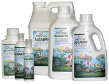 Pond Water Care: Algae Fix | Algae Control Learn more about Pond Supplies, Pond Care & Maintenance, Water Care, Algae Control and Pond Maintenance at SunlandWaterGardens.com