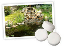 Pond Water Care: GreenClean Tablets | Algae Control Learn more about Pond Supplies, Pond Care & Maintenance, Water Care, Algae Control and Pond Maintenance at SunlandWaterGardens.com