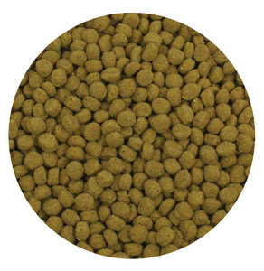 Aquascape Pond Supplies: Cold Water Fish Food Pellets 500g | Part Number 98870 Learn more about Aquascape Pond Supplies at SunlandWaterGardens.com